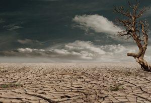 Il pozzo artesiano - area deserta